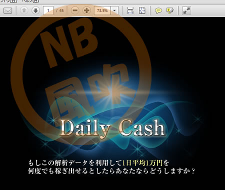 Daily Cashの中身