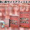 出会い系 サイトアフィリエイトで稼ぐ方法 DSA 木村吾郎の評価